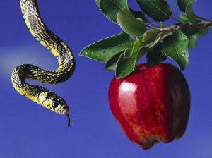 serpent apple